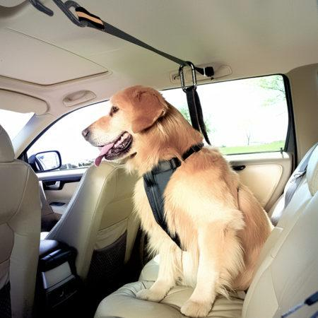 Автомобильные ремни, покрывала и кресла для животных на АлиЭкспресс: готовимся к отпуску с собакой