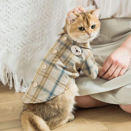 АлиЭкспресс: одежда для кошек на весну