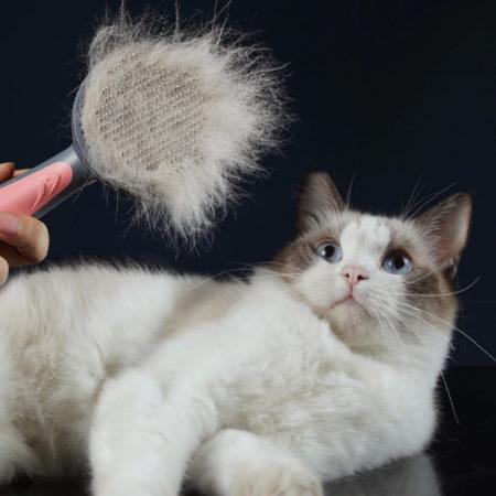 Выбираем приспособления для ухода за шерстью кошек на АлиЭкспресс