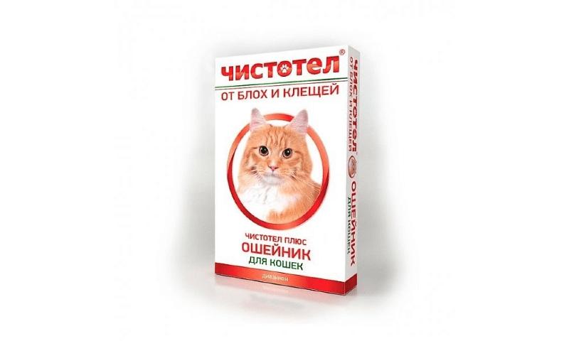 Чистотел для кошек - главное фото