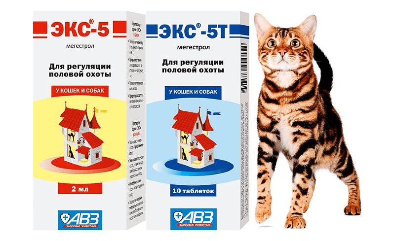 Экс-5 для кошек