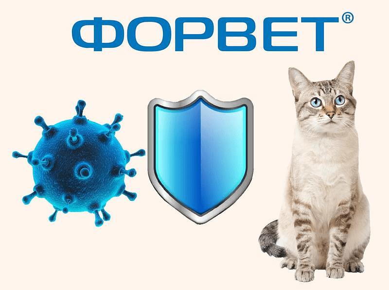 Форвет для кошек - показания