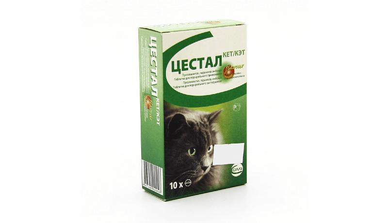 Цестал для кошек - главное фото