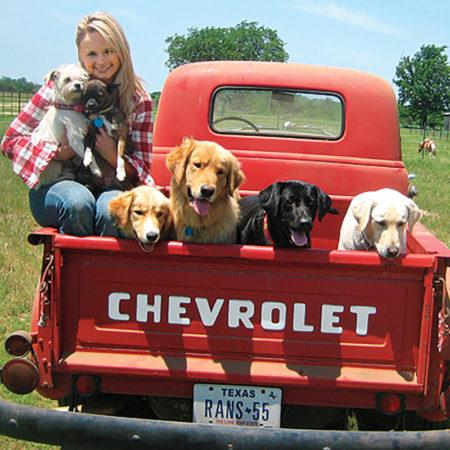 5 американских звёзд, которые предпочли взять собак из приюта для животных