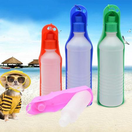 Скоро будет жарко: время подумать о летних аксессуарах для ваших питомцев