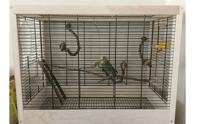 01 - клетка для волнистого попугая