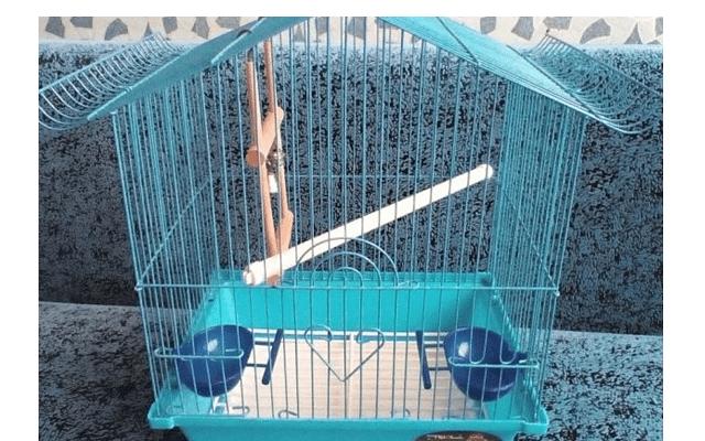 027 - клетка для попугая своими руками