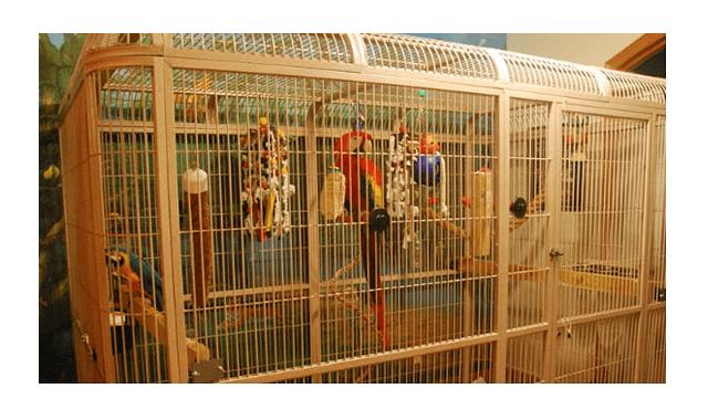 028 - клетка для попугая своими руками