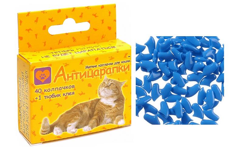 Антицарапки для кошек - главное фото