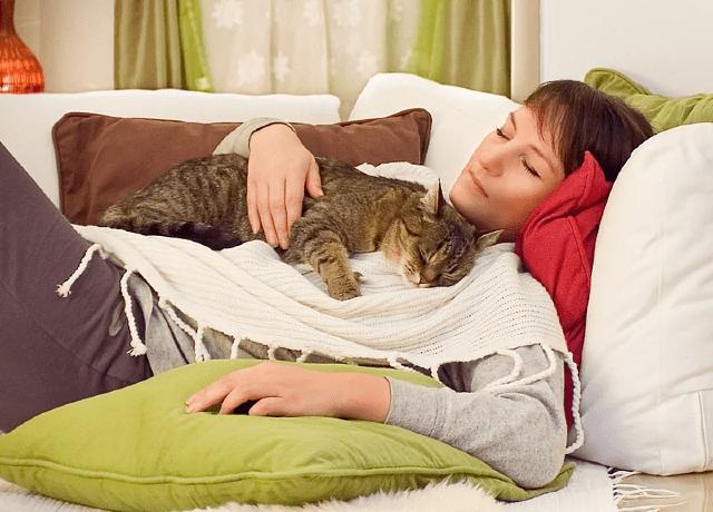 Как кошка чувствует больное место