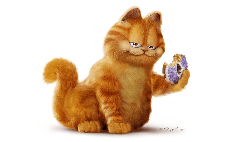 Порода кота Гарфилд - главное фото