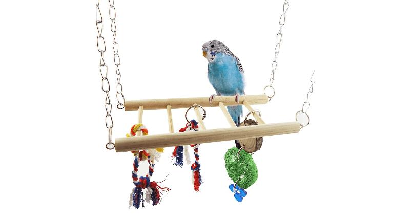 Требования к клеткам для волнистых попугаев - игровая зона