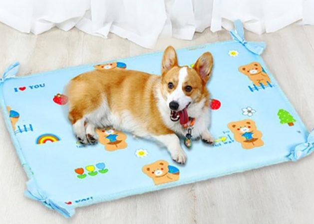 АлиЭкспресс для животных: выбираем коврик для кормления и отдыха