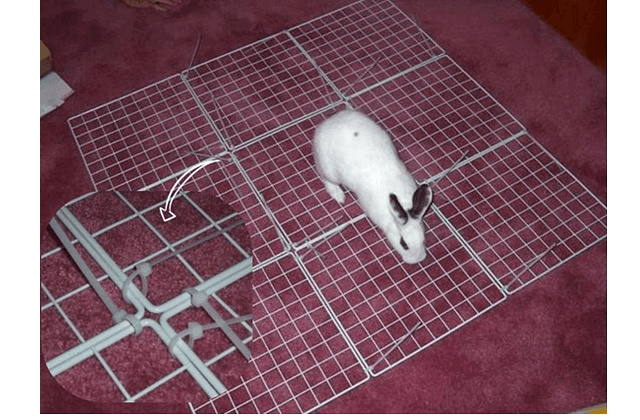 023 - дом для кролика