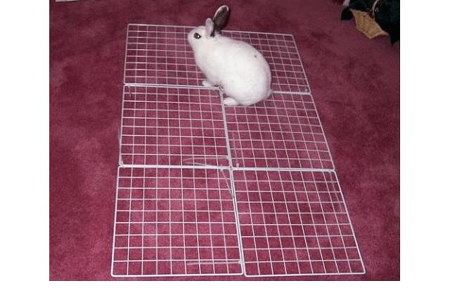 024 - дом для кролика