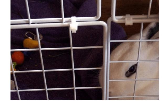 027 - дом для кролика
