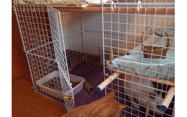 029 - дом для кролика