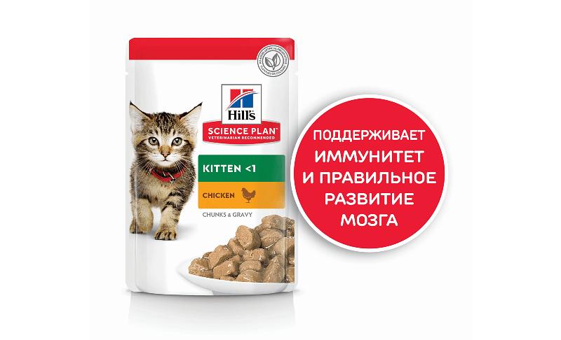 Чем кормить котенка 2 месяца - корм