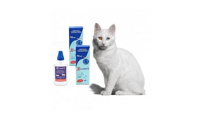 Хелавит для кошек - главное фото
