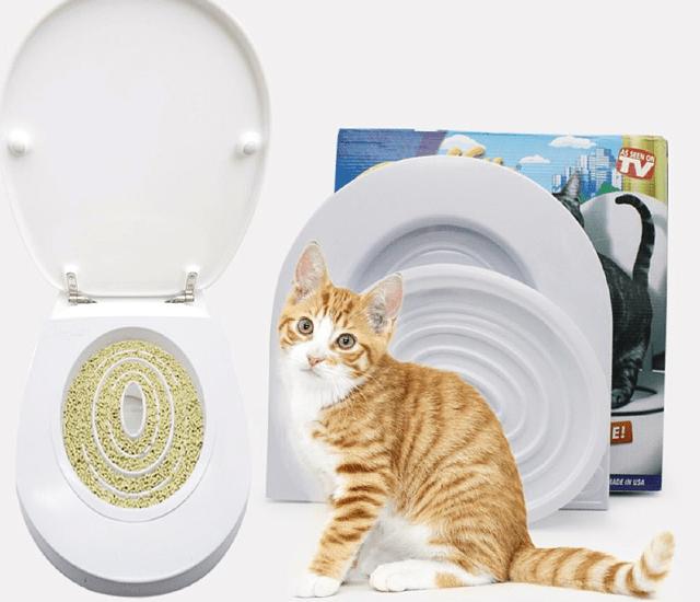 Приучение кота к унитазу