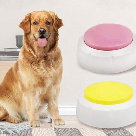 АлиЭкспресс для животных: «говорящие кнопки», которые помогут вам общаться с собакой