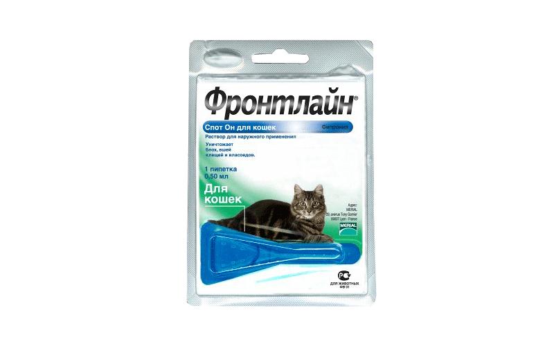Фронтлайн для кошек - главное фото