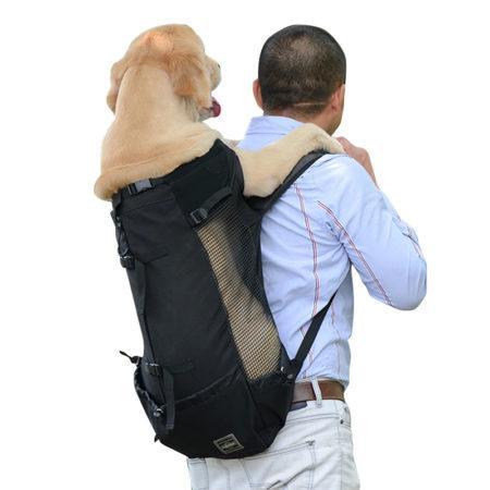АлиЭкспресс для животных: сумки для собак и кошек
