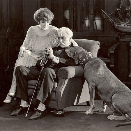 Легендарные собаки немого кино: «великий датчанин» Кистоун Тедди