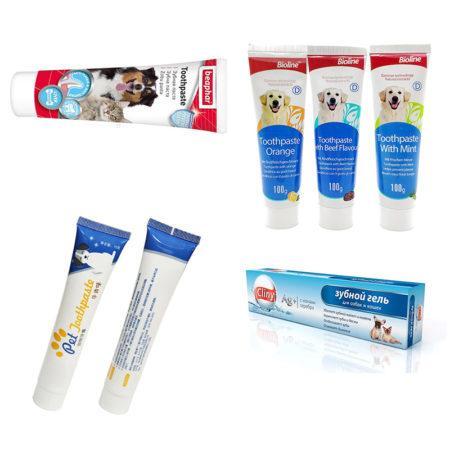 АлиЭкспресс для животных: зубная паста кошкам и собакам