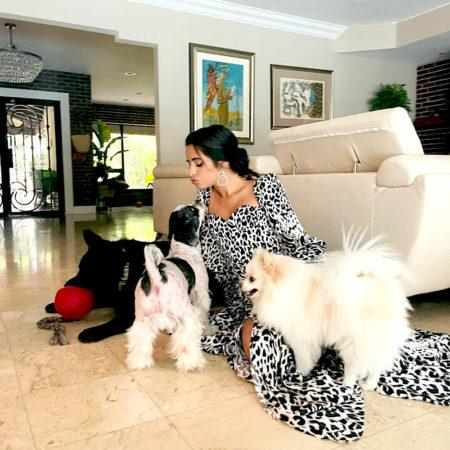 Домашние питомцы знаменитостей: собаки Кайли Дежннер, Камилы Кабельо и Пэрис Хилтон